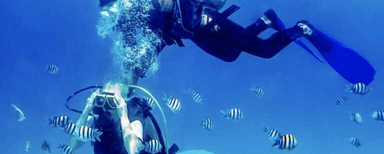 Scuba diving can be recreational, professional, or practiced as a sport.