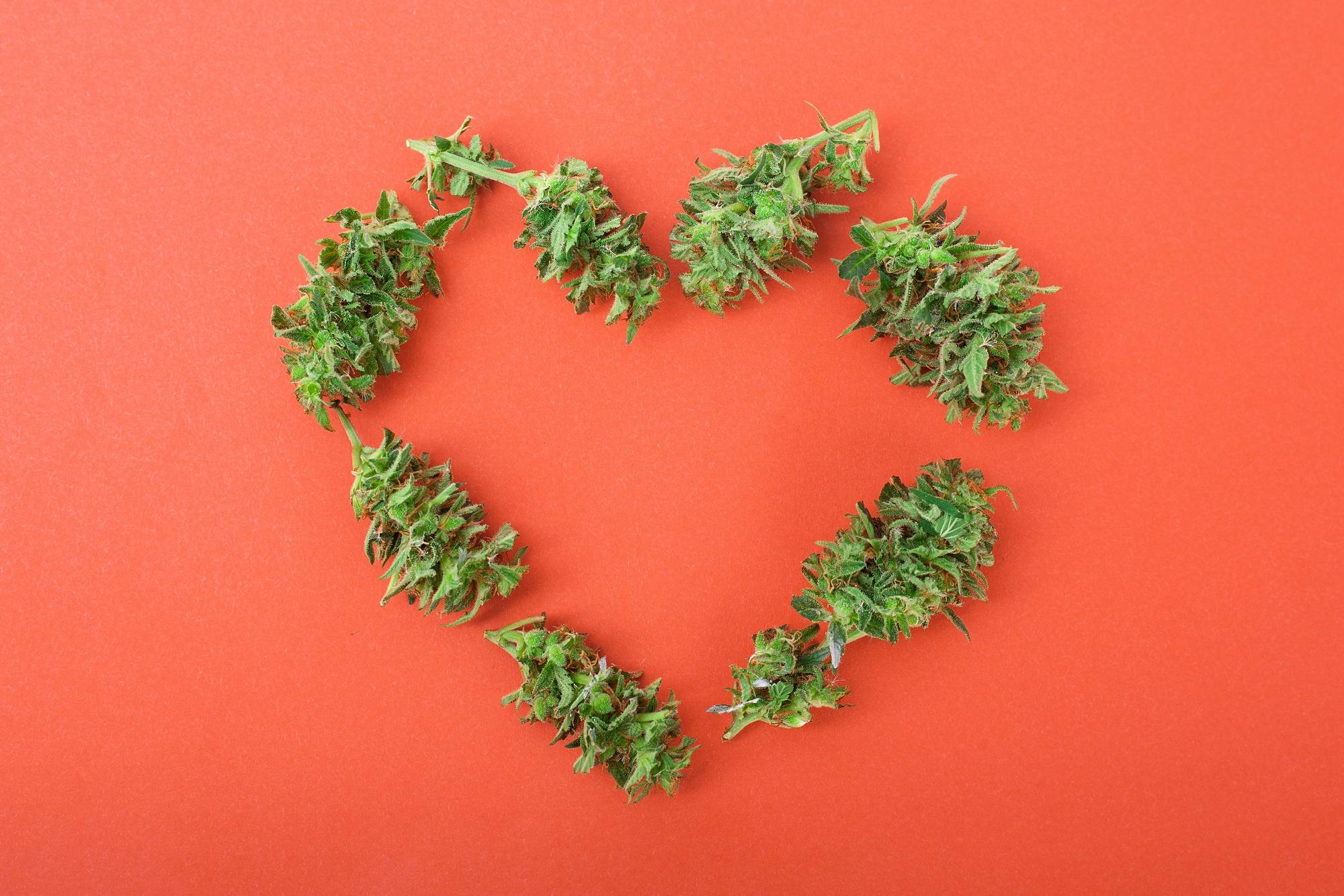 """420 Day: Warum ist es als """"Weed Day"""" bekannt?"""