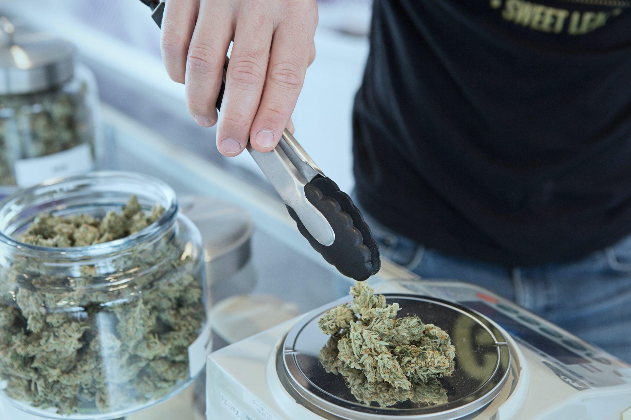 Marihuana-Legalisierung in den USA: Was Sie wissen müssen!